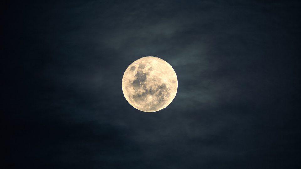 Mit dem Mond und einem Gartenkalender soll sich das Wachstum im Garten steuern lassen