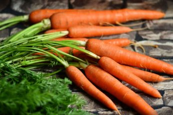 Egal ob Karotten gut für die Augen sind oder nicht - zu einer gesunden Ernährung sollten sie dazugehören