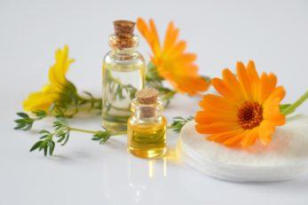 Es gibt verschiedene Heilpflanzen gegen Krebs, die zumindest unterstützend angewendet werden können