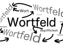 Veranschaulichung und Erklärung zu Wortfeld und Synset