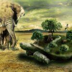 Tiere, die am längsten leben